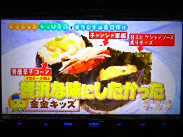 プレミアム ツアラー 禁煙 ナビ TV ETC リアカメラ(15枚目)