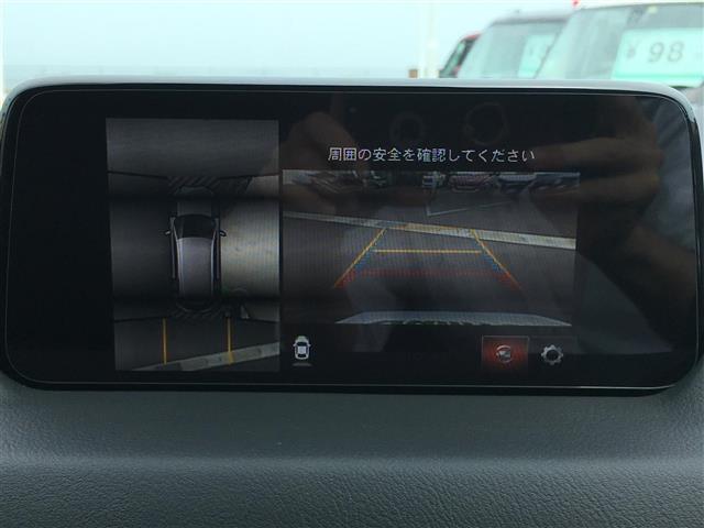 XDプロアクティブ ワンオーナー ナビ 全方位カメラ 衝突軽減(9枚目)
