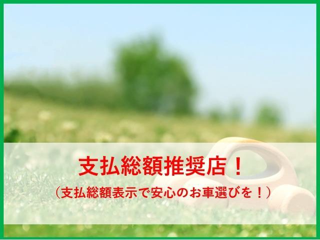 G Sパッケージ・トップライトルーフ・ナビ(3枚目)