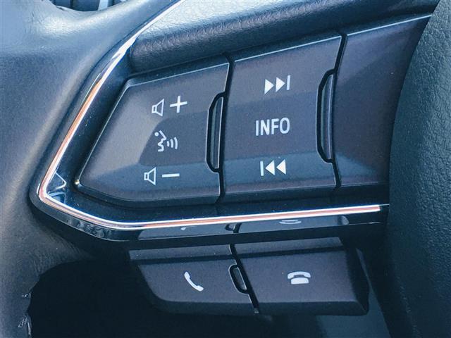 XD プロアクティブ レーンキープアシスト 衝突被害軽減ブレーキ メーカーナビ フルセグ DVD CD BT USB AUX レーダークルーズコントロール ETC オートLEDライト AUTO HOLD 純正19インチAW(13枚目)