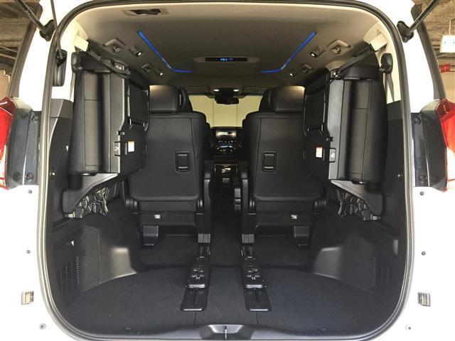 S Cパッケージ セーフティセンス 10型ナビ 両側電動ドア(17枚目)