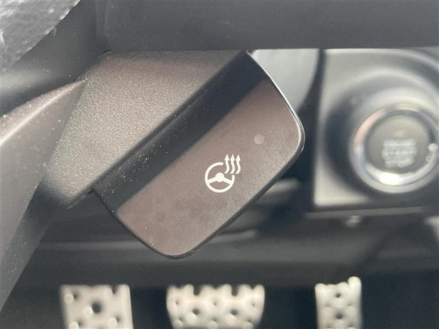 プレミアム アイサイトセイフティプラス運転支援 ルーフレール 純正ビルトイン8型ナビ バックカメラ サイドカメラ 衝突軽減ブレーキ レーンキープアシスト スバルリヤビークルディテクション ETC シートヒーター(78枚目)