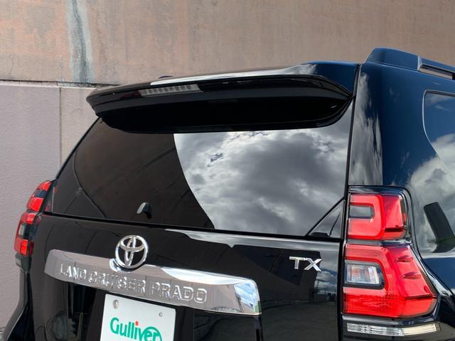 TX 登録済み未使用車 ルーフレール  セーフティセンス 衝突軽減ブレーキ レーンディパーチャーアラート パーキングサポートブレーキ クリアランスソナー レーダークルーズコントロール LEDヘッドライト(57枚目)