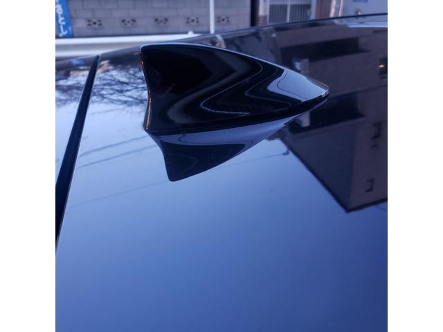NX300h バージョンL サンルーフ&赤レザーシート(11枚目)