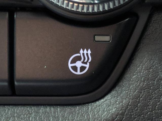 20S プロアクティブ ツーリングセレクション 4WD マツダコネクトナビ 地デジ/DVD/Bluetooth 全方位モニター レーダークルーズコントロール 衝突軽減ブレーキ パワーバックドア D席パワーシート 両席シートヒーター コーナーセンサー(15枚目)
