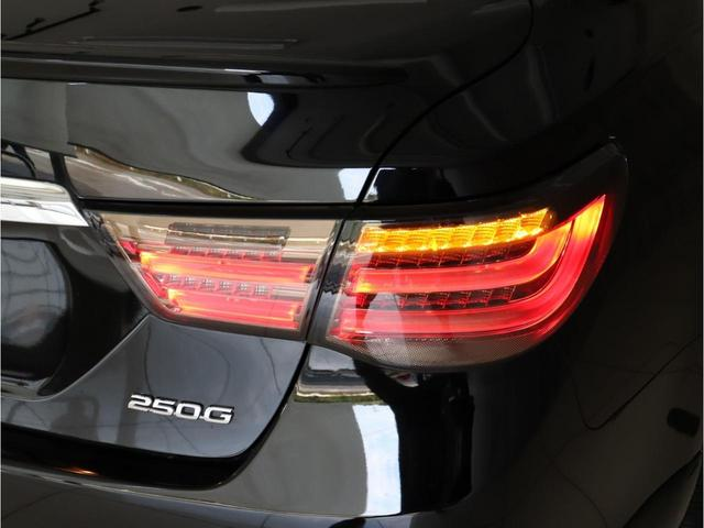 250G-Sリラセレ黒革 後期仕様 新品ファイバーテール(14枚目)