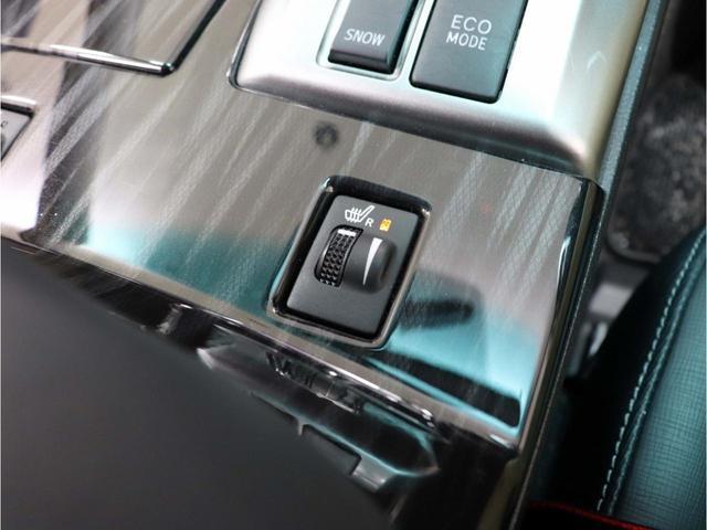 250G-Sリラセレ黒革 後期仕様 新品ファイバーテール(26枚目)