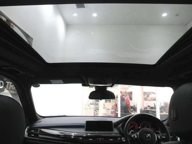 xDrive 35d Mスポーツ サンルーフ ACC ブラックレザー(7枚目)