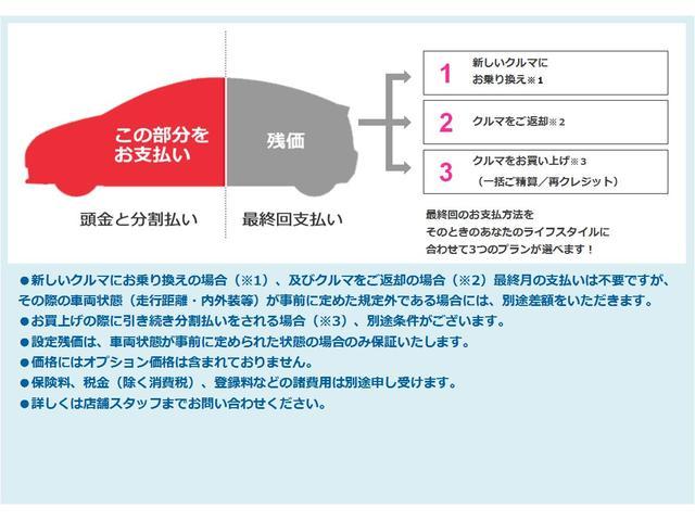 F 前歴レンタカー 純正メモリーナビ バックモニター(20枚目)