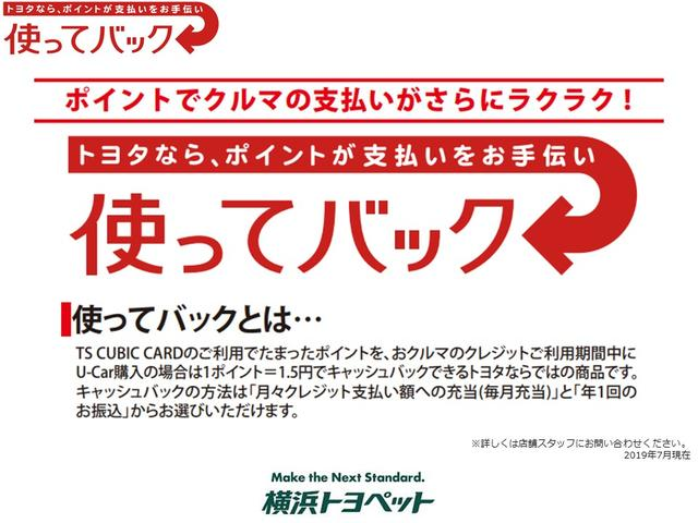 SR Cパッケージ スマートキー メモリーナビ バックカメラ(48枚目)