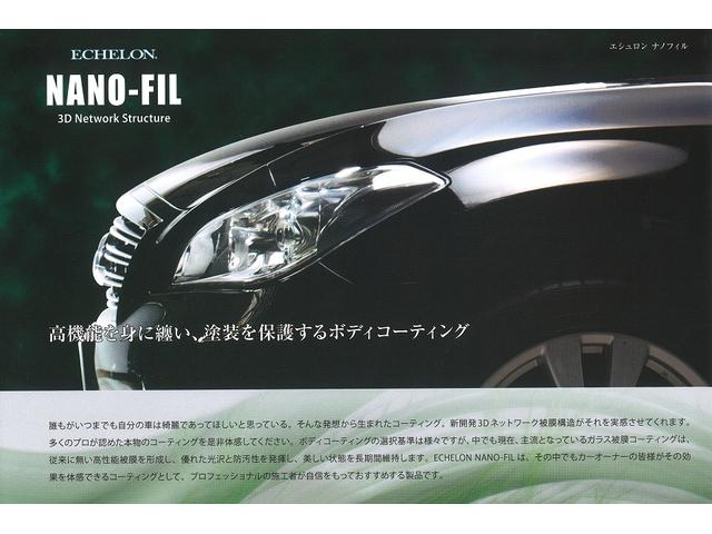 250G Sパッケージリラックスセレクション 純正ナビ(20枚目)
