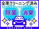 SSR-Xリミテッド サンルーフ・ナビ地デジETC・ルーフレール・カーボンラッピンググリル・パワーシート・USB・Bluetooth(23枚目)