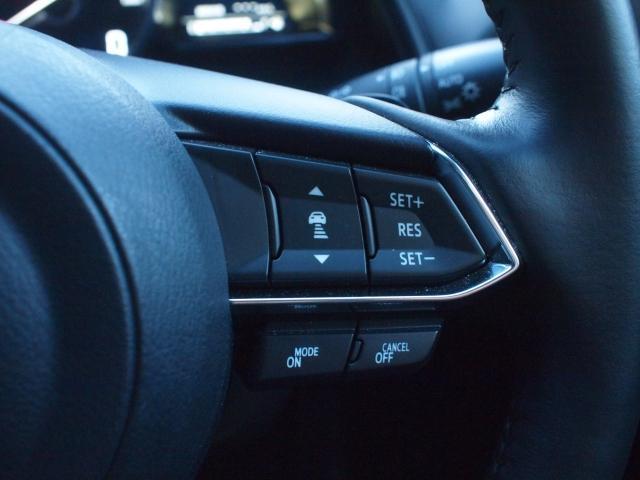 1.8 XD プロアクティブ Sパッケージ 4WD デモアッ(9枚目)