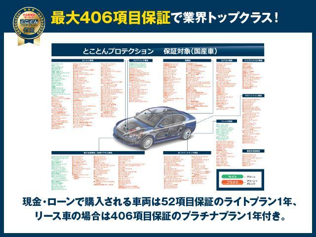 L ETC バックカメラ ナビ オートクルーズコントロール オートライト HID Bluetooth USB DVD再生 キーレスエントリー アイドリングストップ 電動格納ミラー CVT(48枚目)