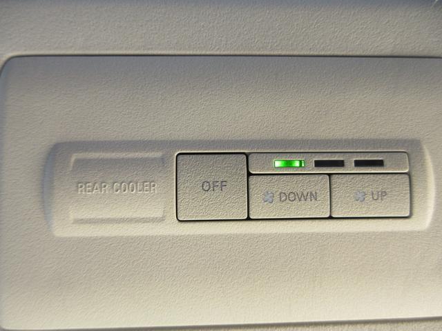 ローデスト G パワーパッケージ 社外HDDナビ Bカメラ フルセグTV 両側パワースライドドア クルーズコントロール Bluetooth接続 ETC HIDヘッドライト 純正18インチアルミホイール(55枚目)