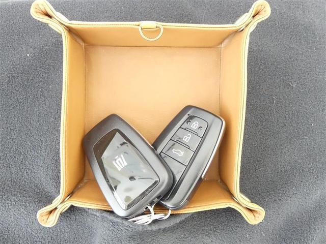 RSアドバンス 地デジ ナビTV DVD CD 1オーナー バックカメラ ETC クルーズコントロール スマートキ- アルミ メモリーナビ パワーシート 記録簿 イモビライザー プリクラ LEDヘッドランプ VSC(19枚目)