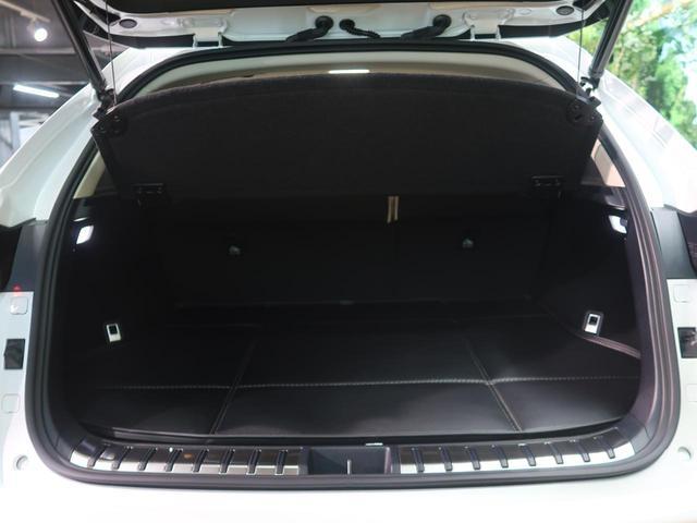 NX300 バージョンL ムーンルーフ ワンオーナー 禁煙車(16枚目)