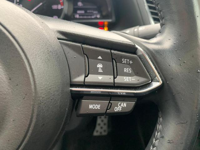 15S プロアクティブ 禁煙車 レーダークルーズコントロール ドラレコ 純正SDナビ DVD 地デジ CD ブルートゥース USB CD コーナーセンサー ETC LEDライト オートライト パドルシフト ウインカーミラー(33枚目)