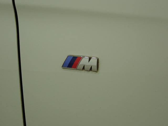 320dツーリング Mスポーツ Mスポーツ 純正ナビ バックカメラ 18AW ターボ車 パワーシート パワーバックドア プロジェクターHIDヘッドライト(19枚目)