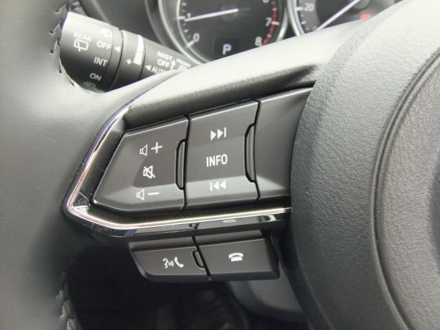 2.5 25S プロアクティブ 試乗車 7人 10.25インチ液晶 フルセグ LED クルコン サイドカメラ パワーゲート パワーシート 全周囲カメラ 前後衝突被害軽減ブレーキ ナビTV バックモニター メモリーナビ 3列シート(13枚目)
