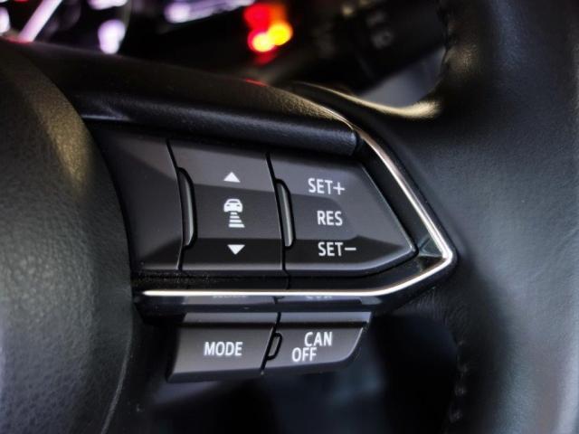 15S プロアクティブ 2WD 地デジ SCBS ETC(12枚目)