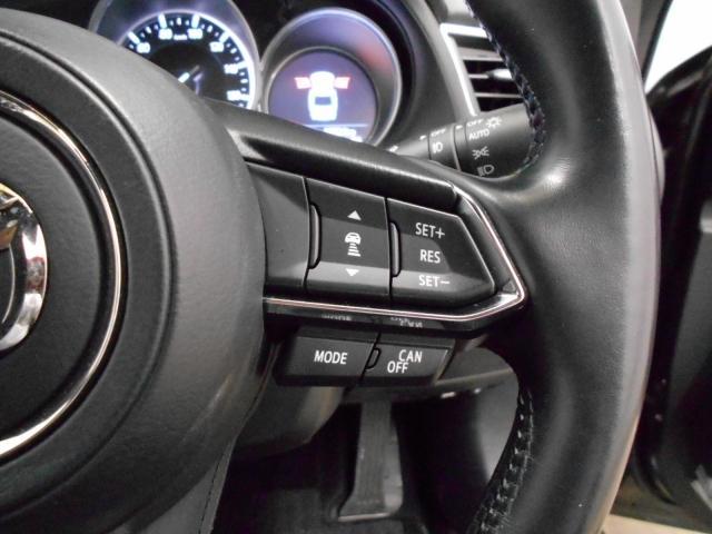 XD Lパッケージ 2WD マツコネナビ ワンオーナー Bカ(9枚目)