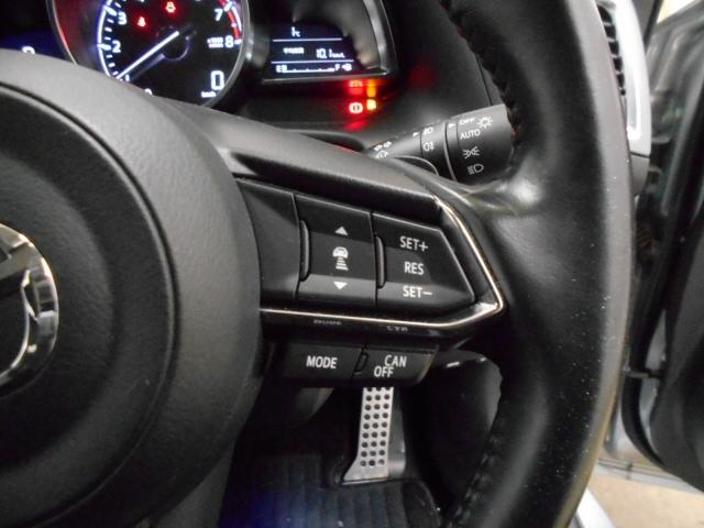 15S Lパッケージ 4WD マツコネ ワンオーナー 360°カメラ(9枚目)