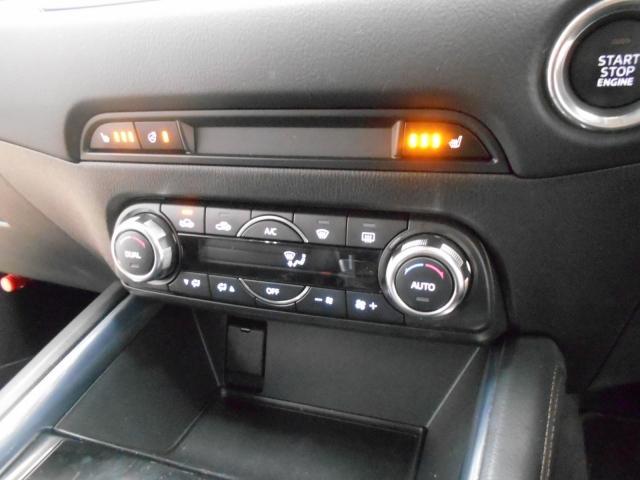 XD L-PKG 2WD マツコネナビ 19AW ワンオーナー BOSE(6枚目)