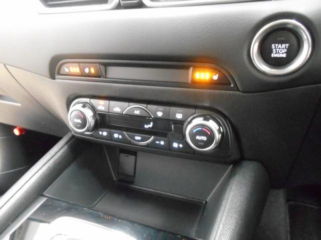 XD プロアクティブ 4WDマツコネ ワンオーナー360°カメラ(6枚目)