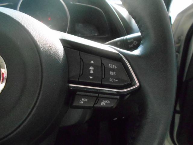 XD エクスクルーシブ モッズ 2WD ワンオーナー 360°(9枚目)