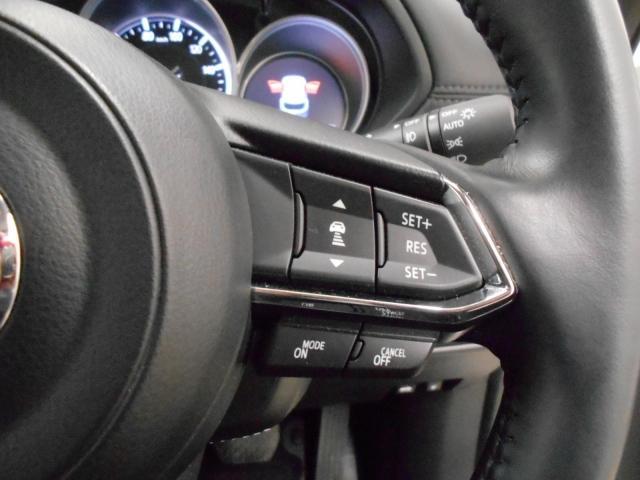 XD プロアクティブ デ4WD ワンオーナー 360°カメラ(10枚目)