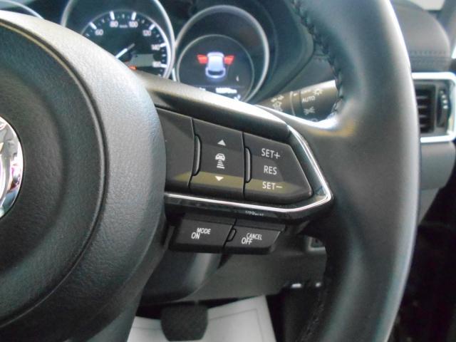 XD プロアクティブ 2WD マツコネ ワンオーナー 360°(10枚目)