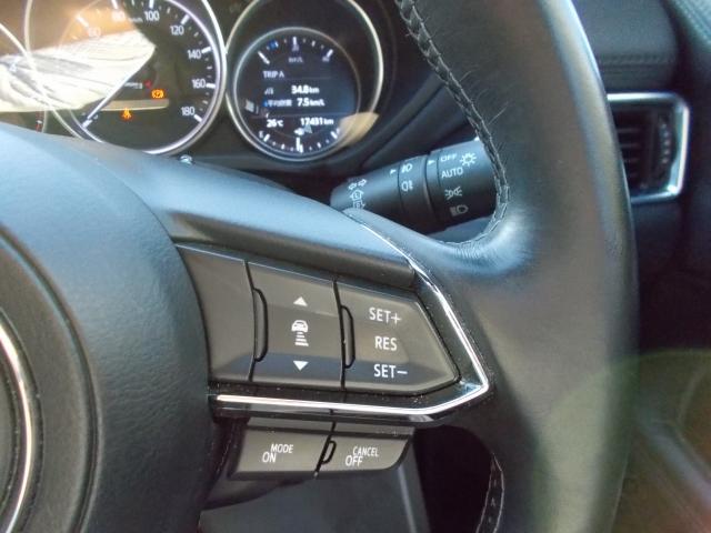2.2 XD Lパッケージ 4WD 360度カメラ リアモニター ドライブレコーダー(12枚目)