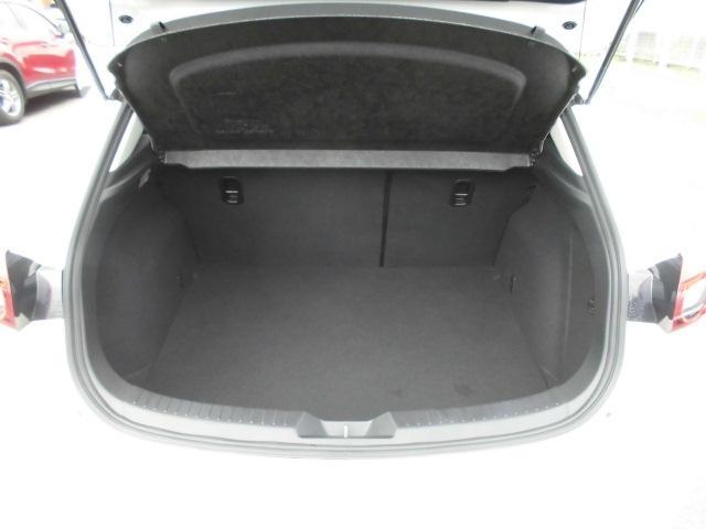 15Sプロアクティブ4WD D席パワーシート 360°モニタ(10枚目)