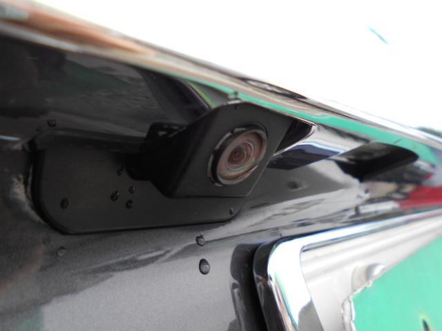 250XV HDDナビ ETC プッシュスタート SBカメラ(11枚目)