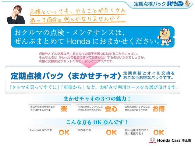 Fパッケージ コンフォートエディション 純正メモリーナビ バックカメラ ETC(21枚目)