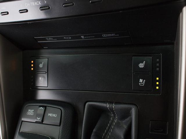 350VerL 本革 HDD LED BSM プリクラッシュ(19枚目)