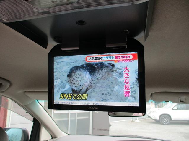 アベマTVも視聴OK!(画像はアベマニュースです)