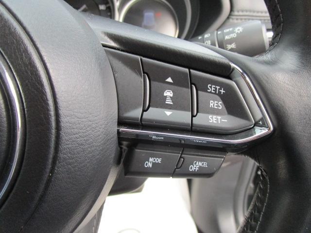 XD L-PKG 4WD 360°モニター リアTV BOSE ワンオーナー(14枚目)