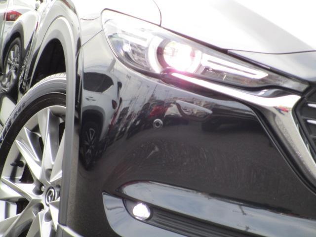 XD L-PKG 4WD 360°モニター リアTV BOSE ワンオーナー(16枚目)