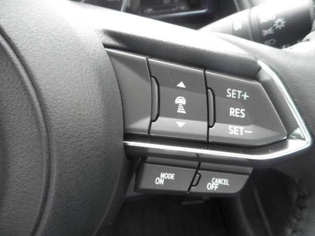 20SプロアクティブSpkg 4WD ナビ 360度モニター(8枚目)