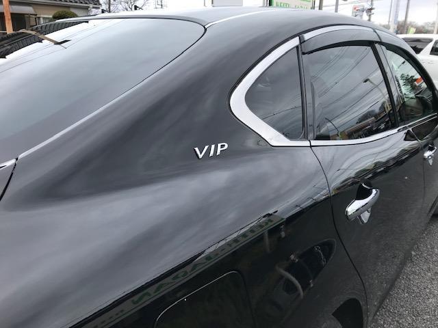 370VIP 禁煙車 黒本革エアシート レーダークルーズC(5枚目)