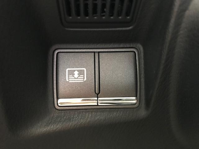370VIP 禁煙車 黒本革エアシート レーダークルーズC(13枚目)