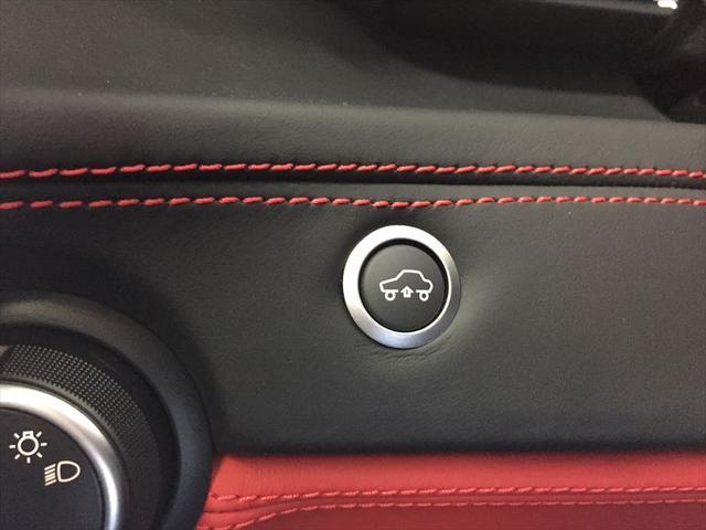 カーボンオプション フロントリフト D車(16枚目)