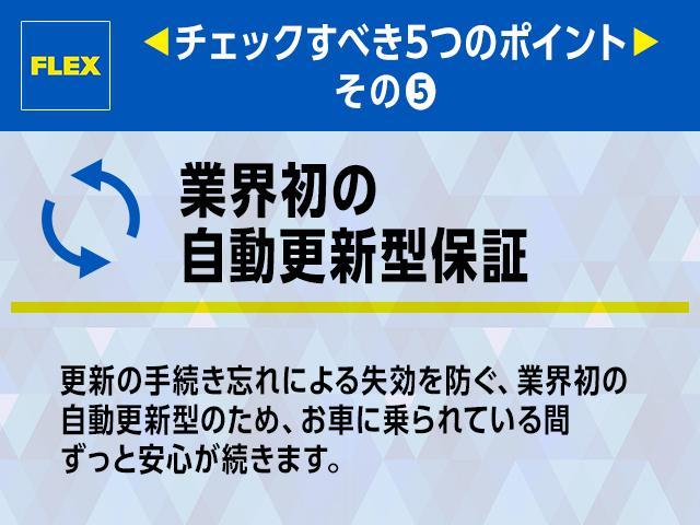 TZ 丸目換装 最上級グレード フルフラットアレンジ(20枚目)