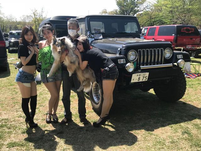 「ダッジ」「ダッジバン」「ミニバン・ワンボックス」「埼玉県」の中古車47