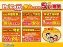 Lスペシャルリミテッド SAIII 7/11-7/17限定車(25枚目)