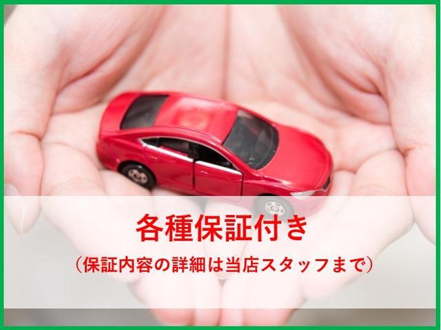 S エネチャージ キーレスエントリー 電動格納ドアミラー プライバシーガラス 純正CDチューナー(48枚目)