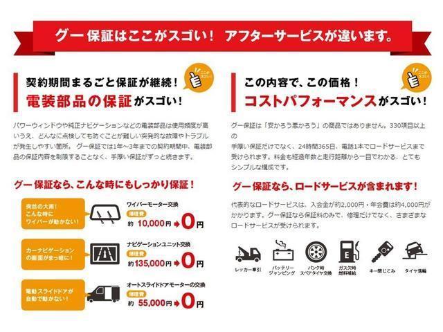 TS インタークーラーターボ ストラーダSDナビ&フルセグTV ETC 両側電動スライドドア インテリジェントキー ディスチャージライト(48枚目)
