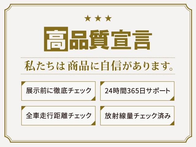 レピス 社外SDナビ CD DVD ブルートゥース ワンセグTV バックカメラ ドラレコ 禁煙 クルーズコントロール HIDライト リアスポイラー(55枚目)